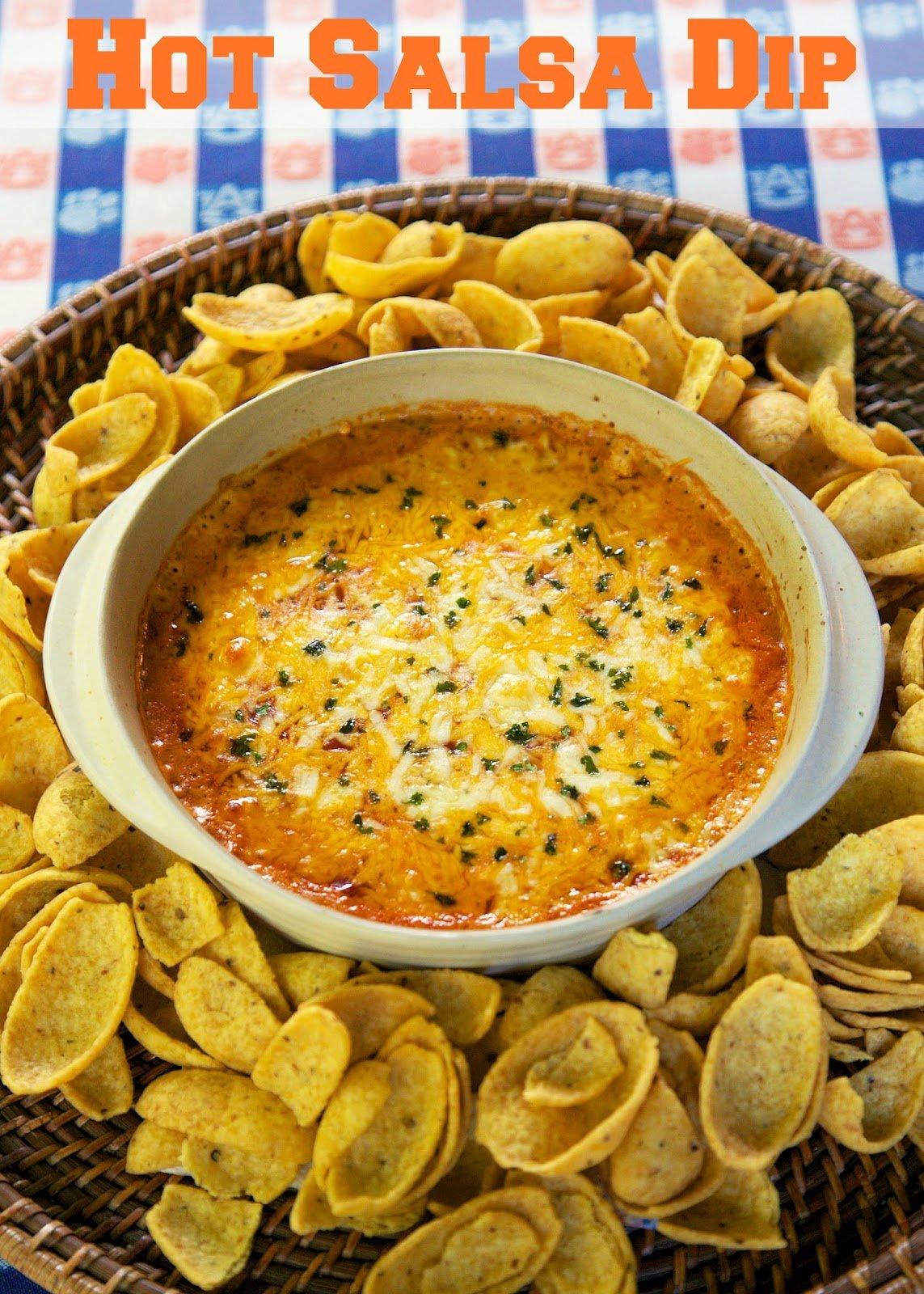 dips-hot salsa dipA