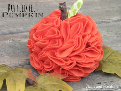 feature-felt pumpkin