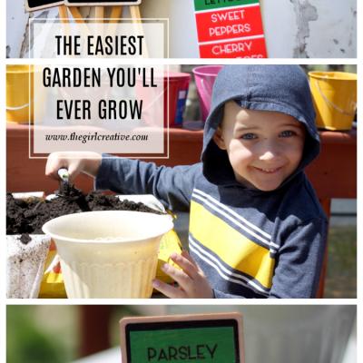 The Easiest Garden You'll Ever Grow