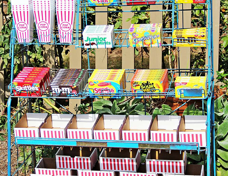 Backyard Movie Ideas genius outdoor movie ideas - the girl creative